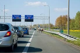 snelweg-hoofddorp